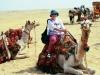 100427020749_cairo-2001